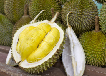 فاكهة الدوريان طعم لذيذ ورائحة لا تطاق
