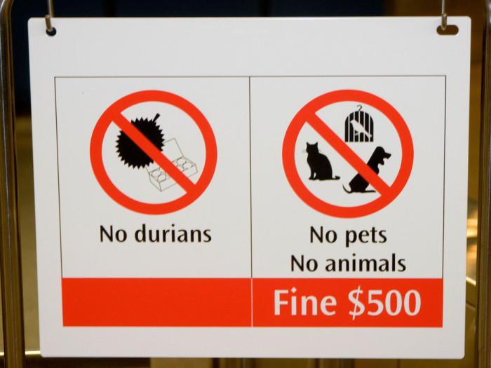 تنتشر العديد من اللافتات التحذيرية من أصطحاب فاكهة الدوريان في الفنادق والطائرات